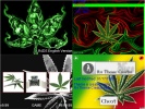 Thumbnail 1 for Weed